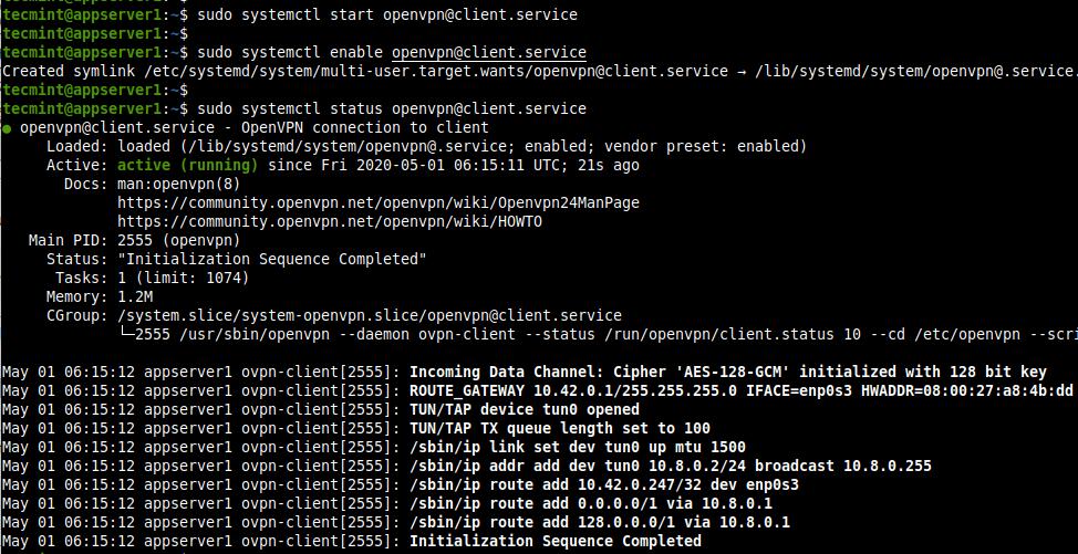 Inicie el servicio de cliente OpenVPN